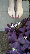 Nancie's toes imagining her new patio