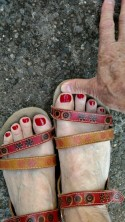 toes in sandals